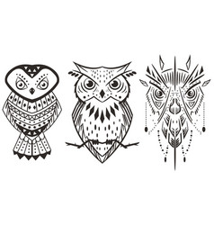 owl tattoo set outline icon vector image