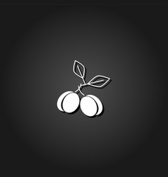 plum icon flat vector image