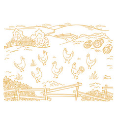 poultry farm chicken factory free grazing vector image