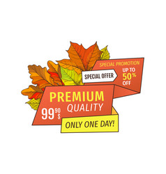 premium special offer one day super half price tag vector image