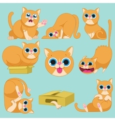 Red cat in different emotions vector