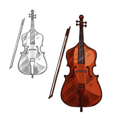 sketch contrabass violin music instrument vector image
