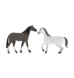 Horse isolated animal vector