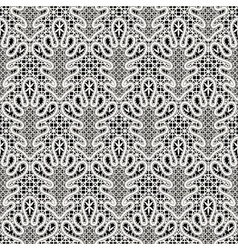 White lace pattern vector image vector image