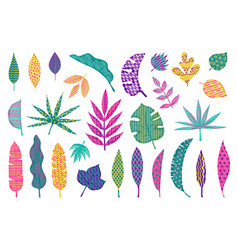 abstract tropical leaves leaf summer tribal vector image