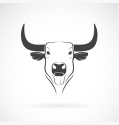 bull head design on white background wild vector image