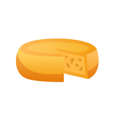 cheese flat vector image