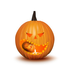halloween pumpkin isolated on white vector image