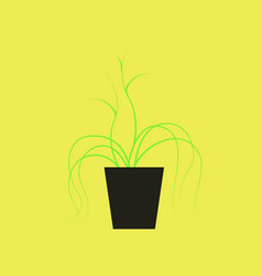 Icon in flat design plant in a pot vector