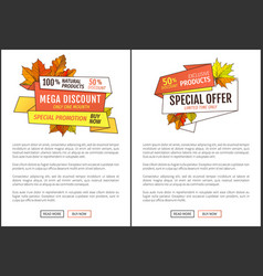 promo autumn or fall discount half price advert vector image