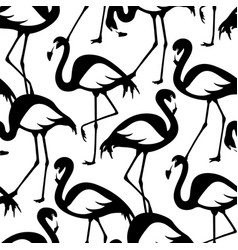seamless pattern with black and white flamingos vector image