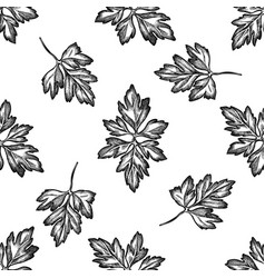 seamless pattern with black and white greenery vector image