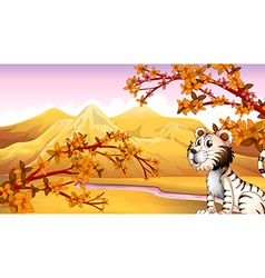 A tiger beside the river vector image