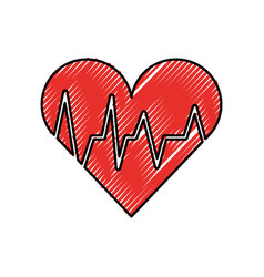 medical heart beat cardiology diagnosis vector image