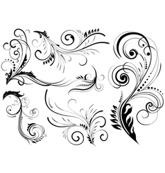 Floral pattern elements vector image vector image