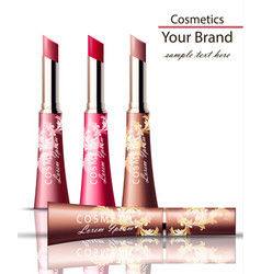 lip stick cosmetics packaging mock up vector image vector image
