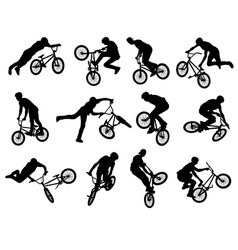 BMX vector image vector image