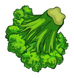broccoli vegetable icon cartoon style vector image