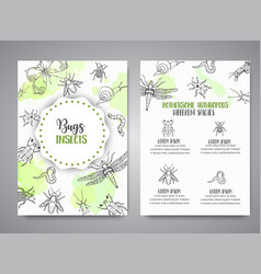 bugs insects hand drawn banner pest control vector image