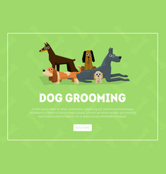 Dog grooming banner landing page template pet vector