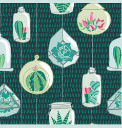 hand drawn colorful hanging terrarium collection vector image