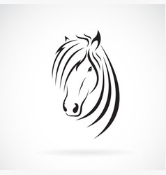 horse head design on a white background wild vector image