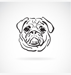 Pug dog face on white background pet animals vector
