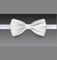 realistic white bow tie vector image
