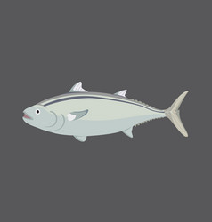 tuna fish in flat style cool vector image