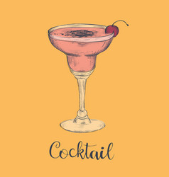 exotic cocktail margarita cherry sketch cocktail vector image