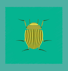 Flat shading style colorado beetle vector