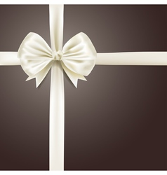 white silky bow ribbon vector image