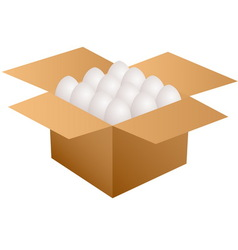 box with eggs vector image
