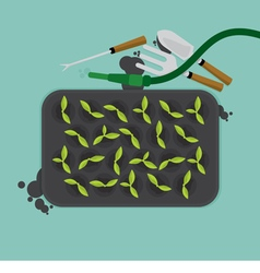 Cultivate Tray With Gardening Equipment vector