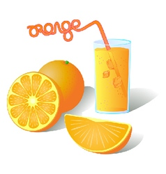 Fresh ripe orange slices with juice vector image