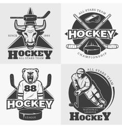 Hockey Team Design Elements vector image