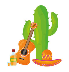 mexican cactu with guitar and tequila vector image