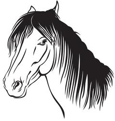 Pony muzzle vector