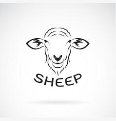 Sheep head design on white background wild vector