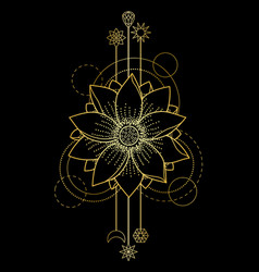 gold lotus modern symbol vector image vector image
