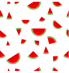 watermelon pattern white background vector image