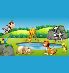 Animals at nature scene vector