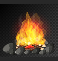 Campfire with big flame and firewoods on black vector