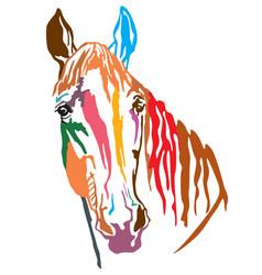 Colorful decorative portrait trakehner horse-2 vector