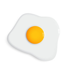 Fried egg and dish vector