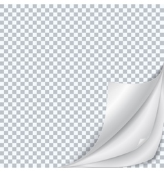 Isolated fold sheet of paper vector image