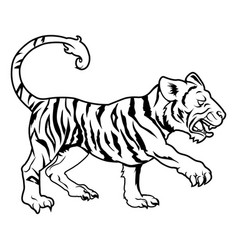 stylized tiger vector image