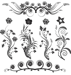 flowers and ornaments vector image