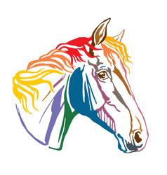Colorful decorative portrait trakehner horse-4 vector