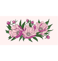 composition of pink peony flowers vector image